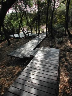 paolo pejrone / giardino argentario, grosseto - floating decks used as footpaths