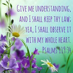Psalm 119:34   KJV    Give me understanding, and I shall keep thy law; yea, I shall observe it with my whole heart.