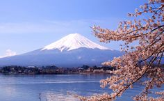 Mount Fuji Sakura HD Wallpaper