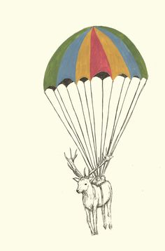 Parachuting animals