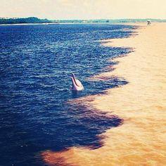 Caroní (aguas oscuras de los taninos vegetales) y Orinoco (aguas con sedimentos arcillosos y arenas)