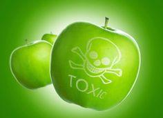 Sicurezza alimentare: bisogna informare i cittadini e comunicare le allerte dei prodotti ritirati. Perché il ministero non lo fa? Lettera aperta a Lorenzin