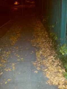 This is how you will find the streets if you walk around london, summer is officially finish, welcome Autumn. After a really hard but really good weekend, In front this new week with new energy, ne...