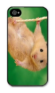iPhone 4/4S Case DAYIMM Animals Funny Hamsters Ropes Black PC Hard Case for Apple iPhone 4/4S DAYIMM? http://www.amazon.com/dp/B012IPPAG8/ref=cm_sw_r_pi_dp_66cmwb048Y423