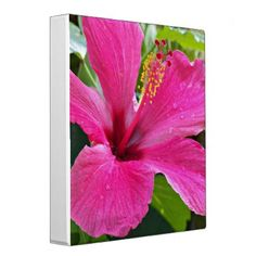 Pink Hibiscus Floral Binder - floral gifts flower flowers gift ideas