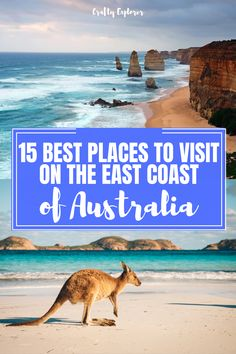 Planning a road trip on the east coast of Australia? Check out this post to discover 15 of the best places to visit on your road trip itinerary! tips Coast Australia, Visit Australia, Australia Travel, Beautiful Places To Visit, Cool Places To Visit, Australia Destinations, Australia Kangaroo, New Year Fireworks, Living In New Zealand