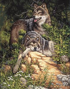 Wild and Free Wolves Cross Stitch Pattern LOOK by JAYLM2006