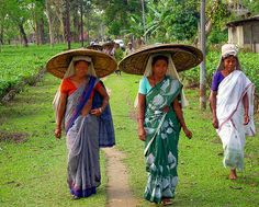 Posts about assam written by indian yarn Brahmaputra River, Simplicity Is Beauty, Back Of My Hand, Northeast India, Beauty Forever, Indian River, India And Pakistan, People Of The World, Incredible India