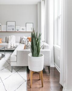 Modern minimalist living room ideas. Gray living room sectional with midcentury modern planter faux snake plant. Modern minimalist interior design inspiration. Home decor with modern clean lines. Living Pequeños, Living Room Grey, Home Living Room, Apartment Living, Living Room Decor, Minimal Apartment Decor, White Apartment, Modern Minimalist Living Room, Minimalist Interior