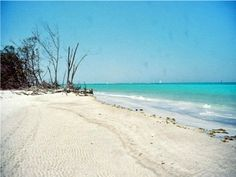 Beer Can Island (Greer Island) in Longboat Key, Florida is a secluded peninsula with a wide beach and excellent shelling.