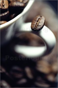 "Bild von Falko Follert Art-FF77 - ""Kaffeebohne - Coffee bean"""
