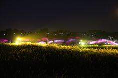 서울억새축제 2014 Seoul Reed Festival  서울 억새축제 http://worldcuppark.seoul.go.kr/guide/pampas_1.html 하늘공원 http://www.youtube.com/watch?v=A0WlQxRjPyI  억세 축제가 한창입니다.. 17일부터 26일까지 서울시 마포구 하늘공원로 95 월드컵공원 내 하늘공원 일대에서 '서울억새축제 2014'가 열린다. 시간을 내어 방문하시면 가을의 추억을 만끽할 것입니다..  우리들한의원 홈피 Wooreedul Korean Medicine Clinic English HP http://www.iwooridul.com/english 日本語HP http://www.iwooridul.com/japan 中國語 HP http://www.iwooridul.com/chinese  우리들한의원 무료앱 다운법 사상체질진단가능 free app. . http://www.iwooridul.com/app-update