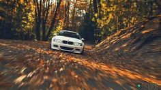 BMW E46 M3 white fall