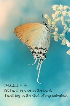 Habacuc 3:18 Con todo, yo me alegraré en Jehová, y me gozaré en el Dios de mi salvación. Romanos 5:8 Mas Dios muestra su amor para con nosotros, en que siendo aún pecadores, Cristo murió por nosotros. Juan 3:15 para que todo aquel que en él cree, no se pierda, mas tenga vida eterna. Efesios 2:8-9 Porque por gracia sois salvos por medio de la fe; y esto no de vosotros, pues es don de Dios; no por obras, para que nadie se gloríe.♔