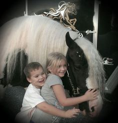Welcome to Shenandoah Gypsy Vanner Horses Enjoy a Gallery of photos from our Farm Thank you for visiting our Web site Hugs N Kisses, Step By Step Instructions, No One Loves Me, My Animal, Pet Care, North America, Gypsy, Photo Galleries, Exercise