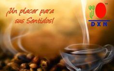 Healthy Coffee, Café Negro Gourmet DXN de venta en Alicante