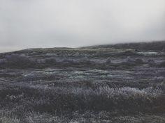2,330 отметок «Нравится», 4 комментариев — ↟ ᛗ ↟ (@thistlemilk) в Instagram
