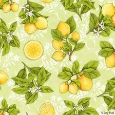 Lemon Botanical - pattern 1 / Joy Hall