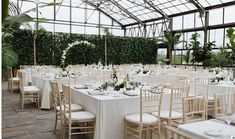 Aquatopia Conservatory is a weddings & special events tropical greenhouse venue Unique Wedding Venues, Unique Weddings, Wedding Events, Tropical Greenhouses, Indoor Water Garden, Natural Stone Flooring, Water Flowers, Lush Green, Wedding Coordinator