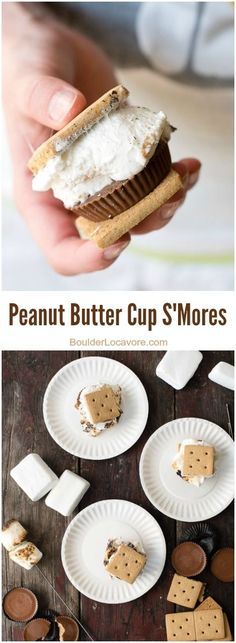 Didn't think it was possible to improve on the iconic summer campfire dessert? You'll fall in love with gooey roasted marshmallows, a peanut butter cup and graham crackers! Campfire Desserts, Campfire Food, Easy Desserts, Delicious Desserts, Yummy Food, Dog Treat Recipes, Snack Recipes, Dessert Recipes, Oven Recipes
