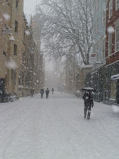 Snowy day in Turl Street, Oxford, Oxfordshire    lots of Snowflakes there, looks cold, but beautiful at the same time.