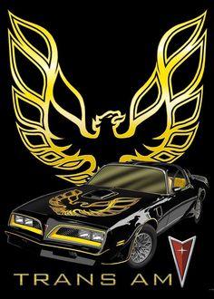Pontiac Trans Am FireBird General Motors, 1979 Trans Am, Bandit Trans Am, Arte Lowrider, Chevy, Automobile, Smokey And The Bandit, Pontiac Cars, Pontiac Firebird Trans Am