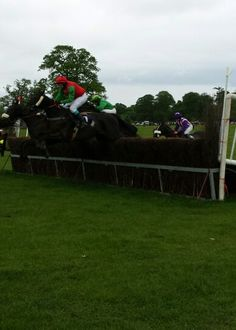 #Ireland #pointtopoint - magical thunder