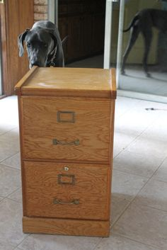 How to update a file cabinet from a thrift store.