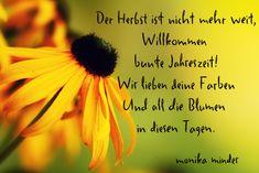 wunderschoene Deutsche gedichte