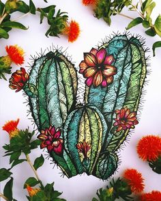 Картинки по запросу cactus with flower drawing