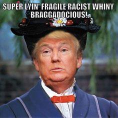 Funny Donald Trump Memes: Super Lyin' Fragile Racist