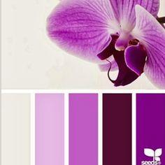 paletas de color rosas a violetas - Buscar con Google