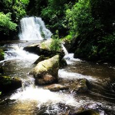 #yellowcreekfalls near #robbinsville nc #waterfall