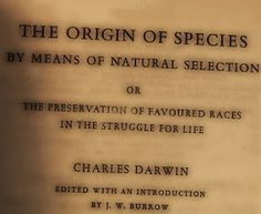 Believe it or not, The Origins of Species By Means of Natural Selection or Preservation of Favoured Races in the Struggle for Life , by Cha. Charles Darwin, Baboon, Pro Life, Closer, The Originals, Books, Libros, Book