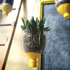 Plastic Bottle Hanging Vase | Community Post: 15 Creative Ways To Reuse Plastic Bottles