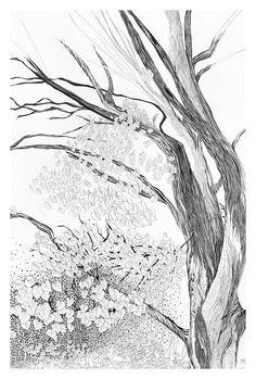 Postkarte Wald handgezeichnete Illustration von von TheresaGrieben