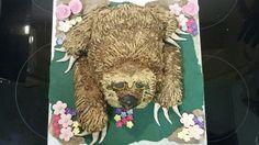 Sloth cake Sloth Cakes