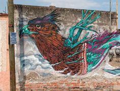 Farid Rueda, México, DF. Cholula, Puebla, 2014. Foto: Eduardo Loza I emeequis