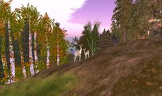 Second Life, Country Roads