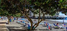 El Médano is an urban beach with golden sand and shallow waters. There is good access for people with limited mobility and all necessary services nearby. El Medano, Tenerife, Beaches, Street View, Urban, Popular, Water, Gripe Water, Teneriffe