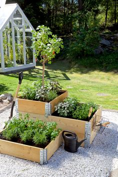 Create shape and height in the garden with pallet collars Blomsterlandet.se - Create shape and height in the garden with pallet collars Blomsterlandet. Diy Planters, Garden Planters, Greenhouse Gardening, Gardening Tips, Container Gardening, Urban Gardening, Gardening Apron, Greenhouse Ideas, Flower Gardening