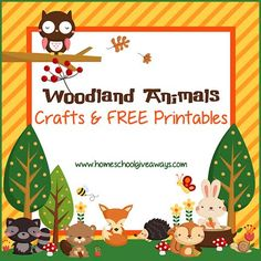 Free printables: woodland animal scavenger hunt cards woodland animal coloring pages woodland friends preschool pack the woodlands emergent readers Woodland Animals Theme, Woodland Nursery Decor, Woodland Creatures, Safari Animals, Forest Animals, Nocturnal Animals, Rustic Nursery, Forest Theme Classroom, Theme Forest
