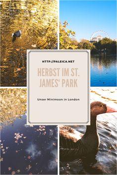 Herbst im St. James' Park - London - Autumn - Fall