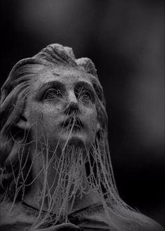 old girl angel Statue bust cobweb web look sad sadness mood dram drama fantasia dark blackandwhite black white black_whit black_and_white blackgirlmagic blackpink pic blackpicture 🖤 Art Noir, Arte Obscura, Slytherin Aesthetic, Cemetery Art, Cemetery Statues, Photocollage, Dark Photography, Abstract Photography, Dark Fantasy