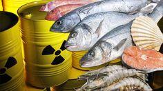 Mangiate pesce mediterraneo? - SocialTV Network https://plus.google.com/105018264643907371072/posts/UuUMkLEEyCW
