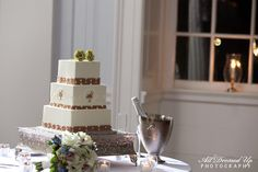 palmetto tree wedding cake- love the cake, but would use another color instead of brown.