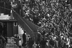 Rioting Tottenham Hotspur fans tear down a section of iron railings in a bid to reach the Chelsea supporters before a Division One game at London's Stamford Bridge ground. British Football, Chelsea Football, Football Fans, Football Stuff, Cardiff City Fc, Tottenham Hotspur Football, London Pride, Spurs Fans, Teenage Wasteland