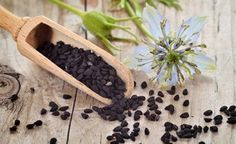 Schwarzkümmelöl - Geheimnisvoll und wundersam