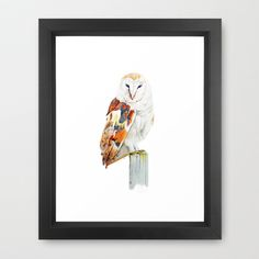 Barn Owl Framed Art Print by Night owl - $37.00