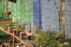 DIY : une serre de jardin fait maison | Gamm vert Serre Tunnel, Mini Serre, Diy, Gardens, How To Make Paper Flowers, Pinterest Board, Interior Garden, Paper Envelopes, Homemade Greenhouse